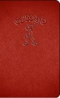 CONDORITO NOTEBOOK DE LUJO ROJO, 9789568069032